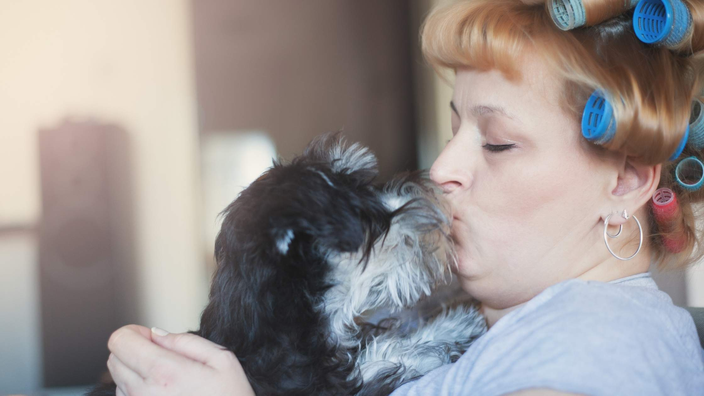 Middle aged woman with blue curlers in her hair plants a kiss on her little black dog's head