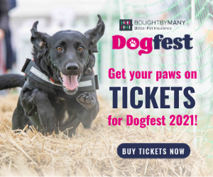 DF Hurdles Get your paws on tickets