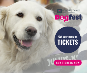 DF White Lab - Get your paws on tickets