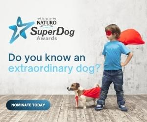 SuperDog Awards logo and pic with a boy and a dog each wearing a red cape.