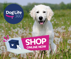SHOP ONLINE AT DOGLIFE360