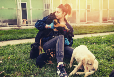 A young woman sits on the grass at the dog shelter surrounded by dogs.