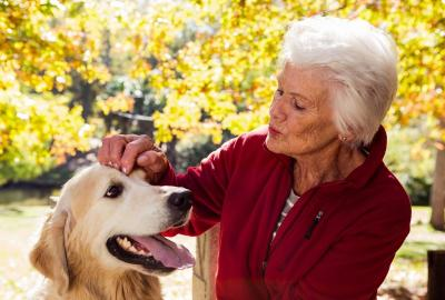 Grey haired lady wearing a maroon top pets a blonde lab