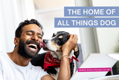 DogLife360 THE HOME OF ALL THINGS DOG