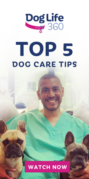 DR_Paul_5 Tips