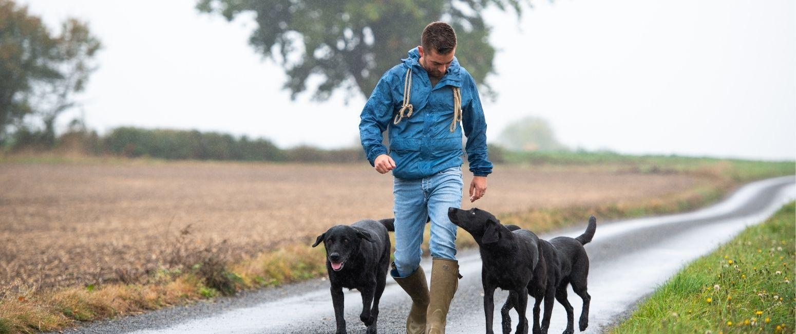 Adem Fehmi walking along a country lane with two black labradors